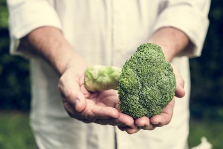 Fresh broccoli vegetable Banco de Imagens