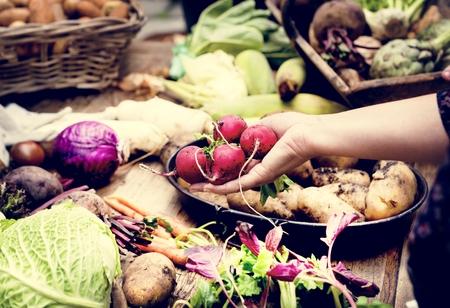 Closeup of hand holding fresh organic vegetable