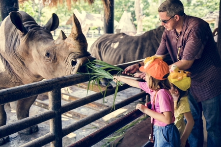 Young caucasian girls feeding rhino at the zoo Stok Fotoğraf - 103996562