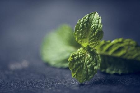 ペパーミントはハーブを調理する葉