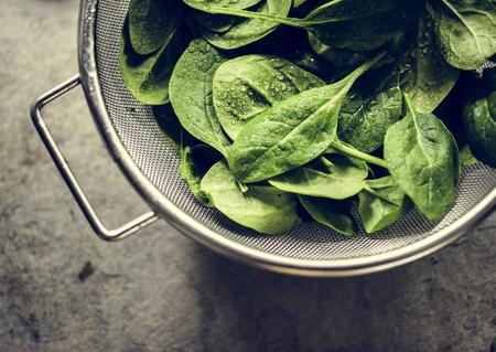 Closeup of fresh organic spinach leaves