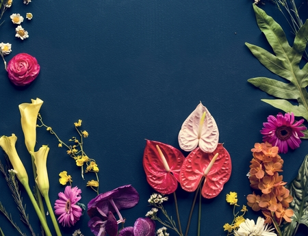 Colorful tropical flowers on black background Stock Photo