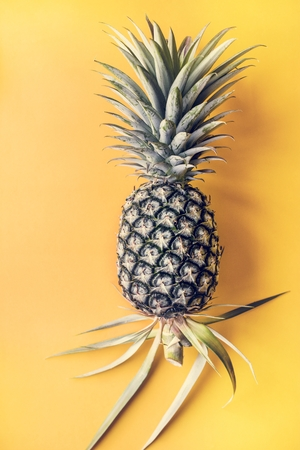 Single pineapple with yellow background