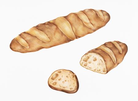 Vers gebakken stokbrood handgetekende illustratie