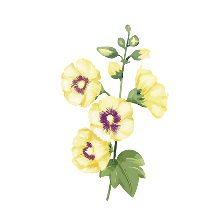 Hand drawn yellow hollyhocks flower illustration Stock fotó