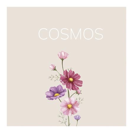 Hand drawn cosmos flower illustration Zdjęcie Seryjne - 105391505