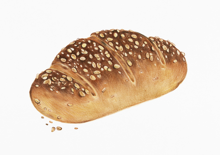 Freshly baked multigrain bread hand-drawn illustration