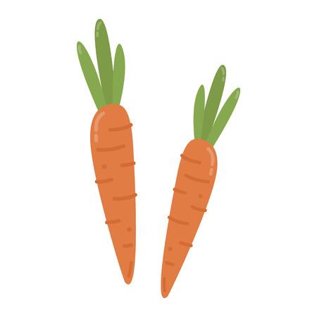 Healthy orange carrots graphic illustration