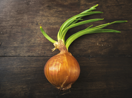 Onion on wooden background Imagens
