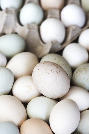 Fresh eggs Stock fotó