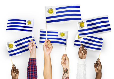 Hands waving the flags of Uruguay