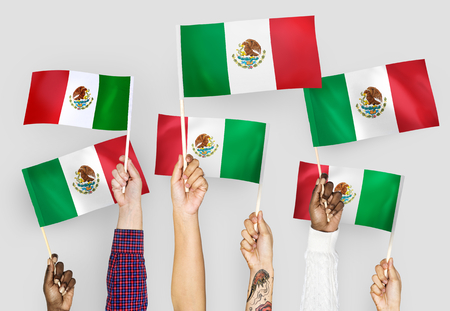 Hands waving the flags of Mexico 版權商用圖片 - 108321666