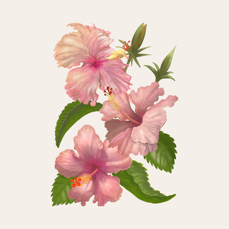 Illustration drawing of Watercolor flower Stock Photo