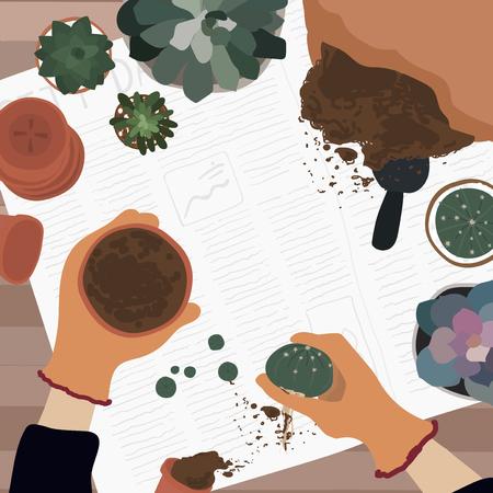 Gardener planting a cactus into a pot Banco de Imagens