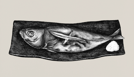 Hand drawn grilled mackerel fish