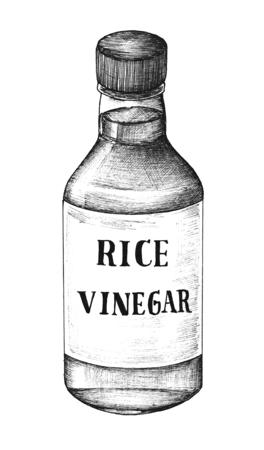 Hand drawn komezu rice vinegar