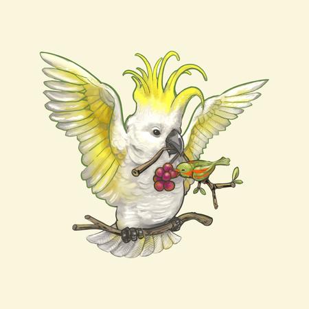 Hand drawn Cockatoo bird isolated