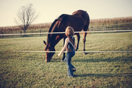 Little girl playing with a horse Stock Photo