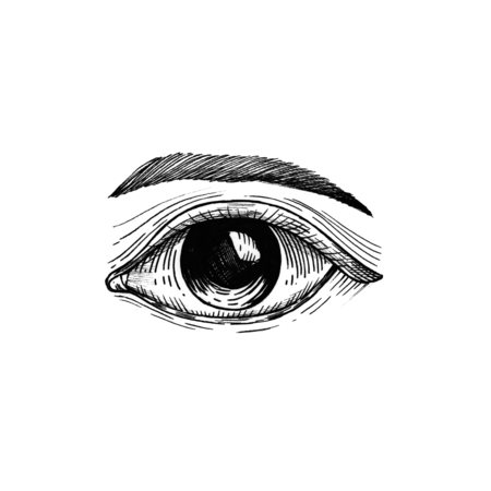 Human eye vintage style illustration