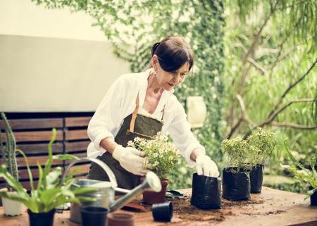 People is planting flowers