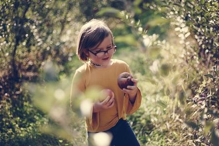 Little girl picking holding some apples