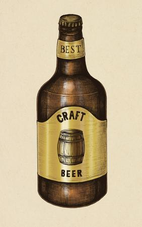 Craft beer illustration