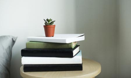 Topfpflanze auf einem Stapel Bücher