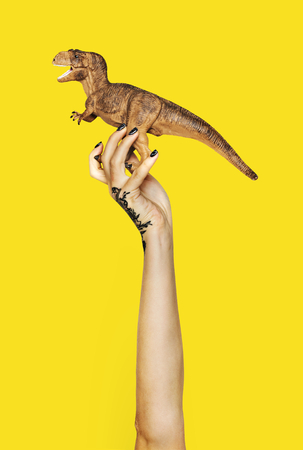 Hand holding variation of object 版權商用圖片