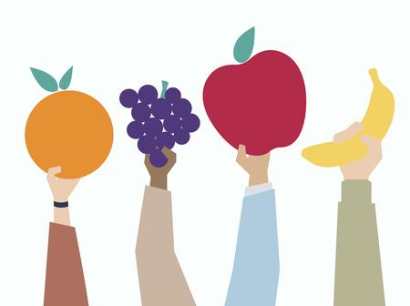Illustration of hands holding fruits