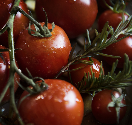 Cherry tomatoes with rosemary food photography recipe idea Stock fotó