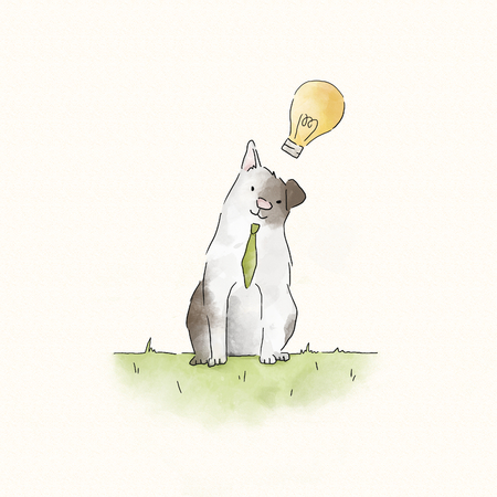 Smart cat with creative ideas