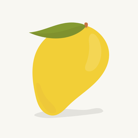 Hand drawn mango fruit illustration