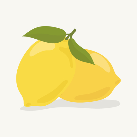 Hand drawn colorful lemon illustration