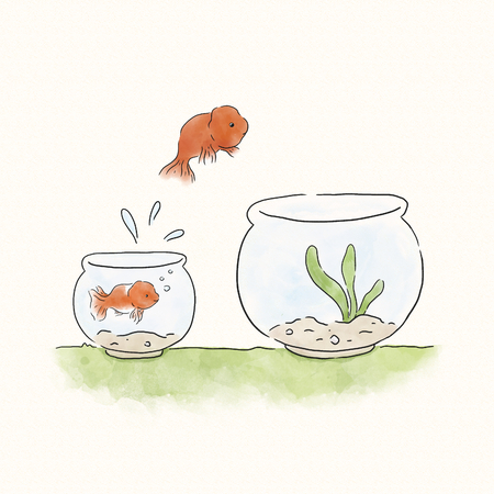 Goldfish jumping into a bigger bowl Stockfoto