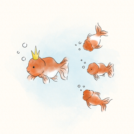 Goldfish following their fish king