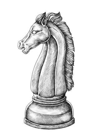 Hand-drawn chess knight illustration Imagens
