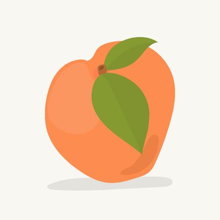 Hand drawn apricot fruit illustration Stock Illustration - 111783125