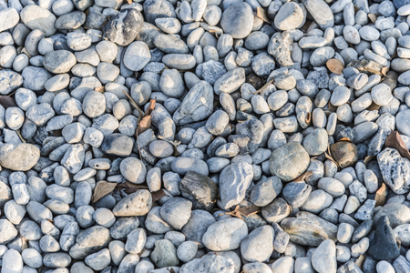 Pebbles and rocks on teh ground