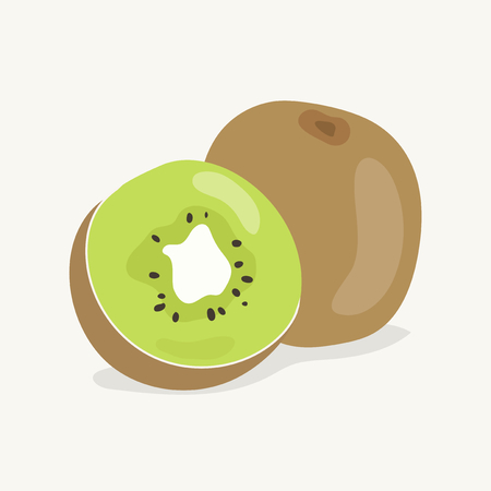 Hand drawn kiwi fruit illustration 스톡 콘텐츠