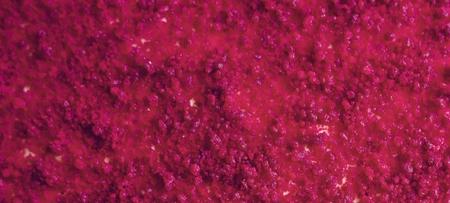 Red velvet cake food photography recipe idea