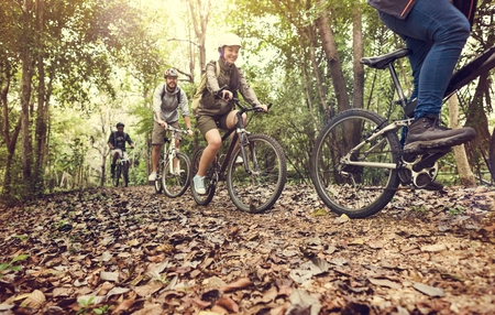 Group of friends ride mountain bike in the forest together Imagens