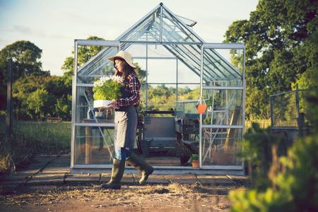 Woman working in a greenhouse Imagens