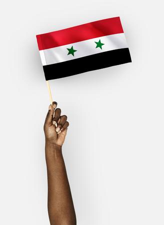 Person waving the flag of Syria Stockfoto