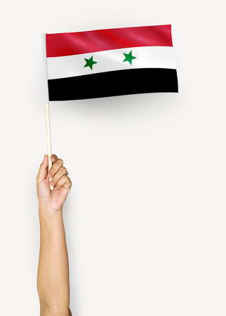 Person waving the flag of Syria Stockfoto
