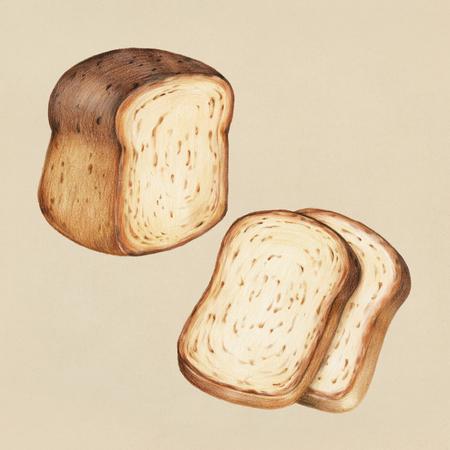 Vers gebakken brood handgetekende illustratie Stockfoto