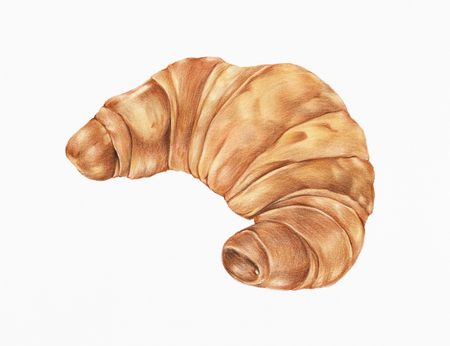 Freshly baked croissant hand-drawn illustration