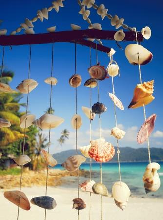 Sea shell chime at a tropical lagoon Фото со стока