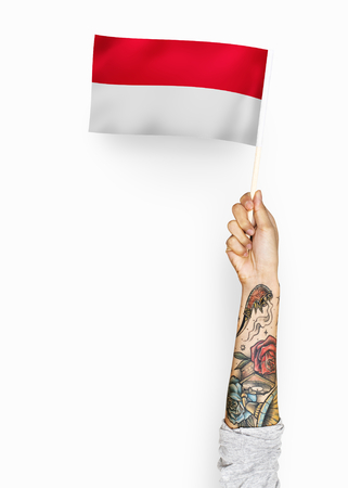Person waving the flag of Principality of Monaco