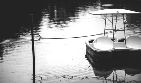 Paddle boat in a dark lake 写真素材