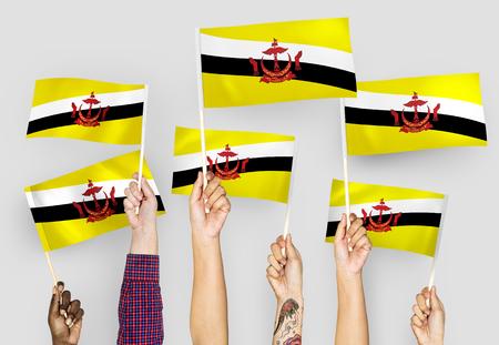 Hands waving flags of Brunei